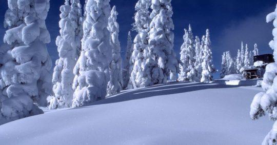 Hitta motiven i vintermörkret